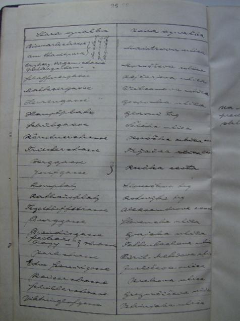 Slika                         1: Seznam starih in novih poimenovanj cest in ulic v Mariboru v zapisniku V.                         seje mestnega sosveta